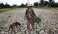 Đề xuất cách rửa mặn đồng bằng sông Cửu Long