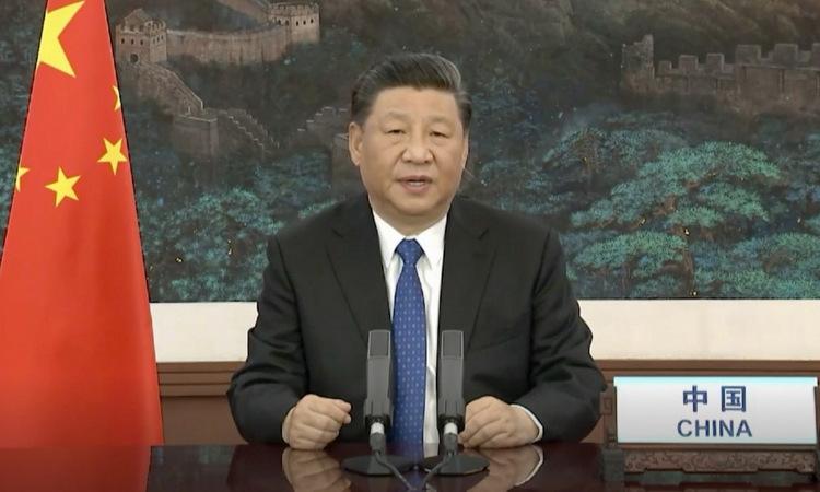 Ông Tập trong phiên họp từ xa của WHA hôm 18/5. Ảnh: AFP.