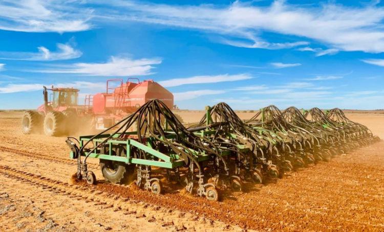 Một cánh đồng lúa mạch tại Australia. Ảnh:ABC News.