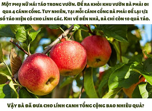 Lính canh giữ của người hái táo bao nhiêu quả?