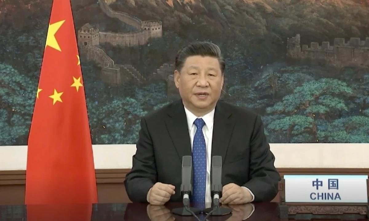 Chủ tịch Trung Quốc Tập Cận Bình phát biểu tại cuộc họp trực tuyến WHA ngày 18/5. Ảnh: Peoples Daily.