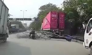 Cây khô bật gốc trúng người đi đường