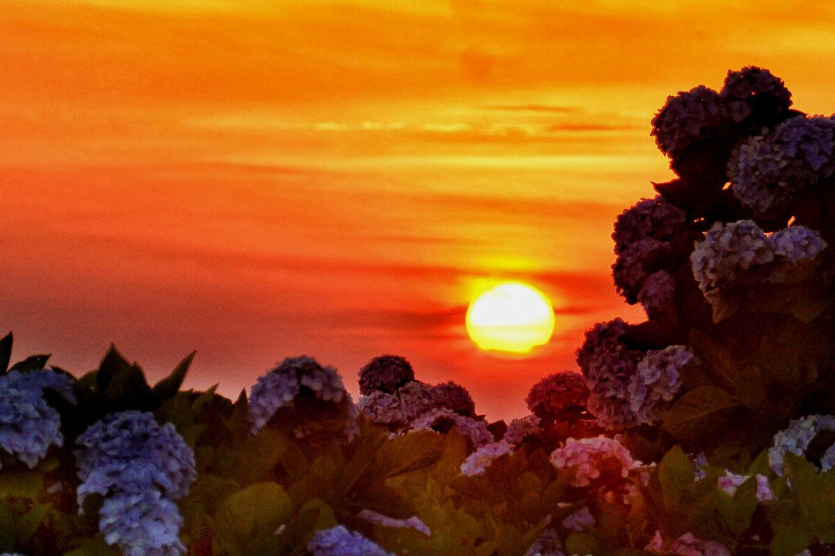 Đỉnh núi Mẫu Sơn, Lạng Sơn lúc 18h ngày đầu tháng 6. Ảnh: Hoàng Huy.