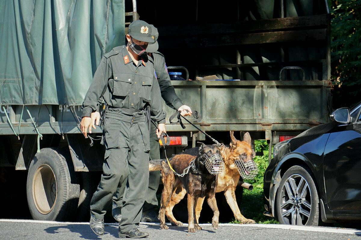 Chó nghiệp vụ được dẫn theo để tuần tra, đánh hơi tội phạm ở đèo Hải Vân. Ảnh: Nguyễn Đông.
