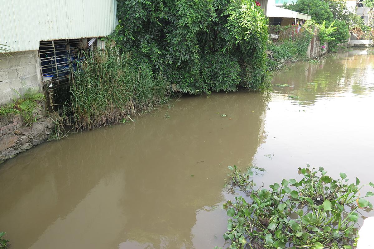 Mương nước tại thôn Phương Chử Đông, xã Trường Thành bị ô nhiễm bởi chính nguồn vào từ sông Lạch Tray và nguồn thải ra từ các hộ dân sinh sống 2 bên mương. Tuy nhiên, nó lại được công ty Phúc Hà sử dụng làm nguồn nước để sản xuất nước lọc tinh khiết. Ảnh: Giang Chinh