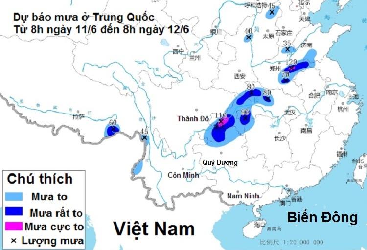 Bản đồ dự báo lượng mưa ở Trung Quốc từ ngày 11/6 đến 12/6. Ảnh: Cục Dự báo Khí tượng Trung Quốc.