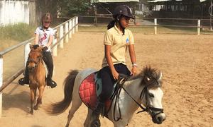 Học cưỡi ngựa ở Sài Gòn