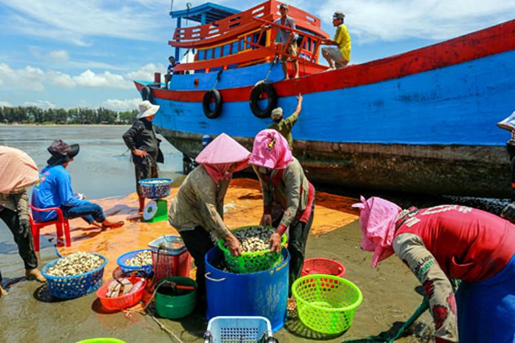 Ngư dân Cần Giờ sống chủ yếu với nghề đánh bắt hải sản. Ảnh: Thành Nguyễn.