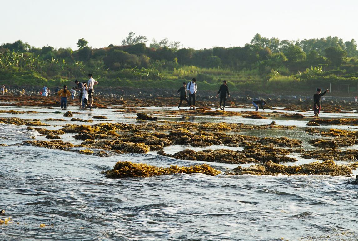 Nhiều du khách giẫm lên san hô. Ảnh: Phạm Linh.