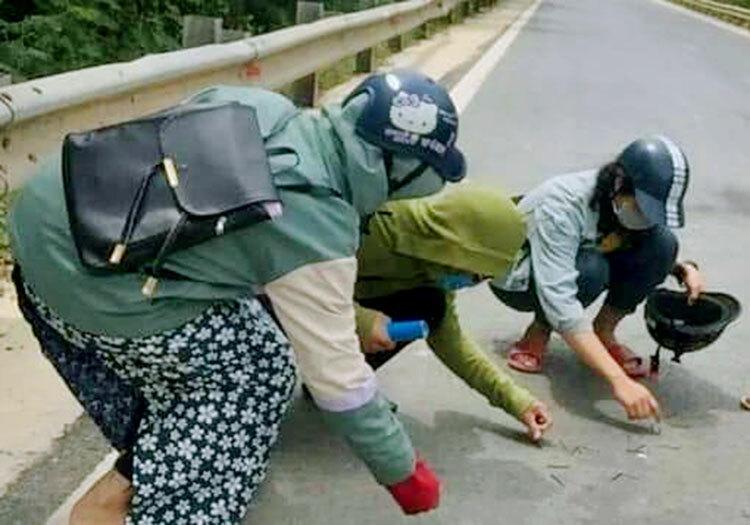 Nhóm học sinh nhặt đinh rơi trên đường Hồ Chí Minh trưa 25/6. Ảnh: Quốc Châu