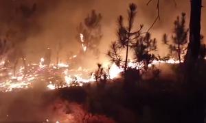 Hàng nghìn người dập tắt cháy rừng