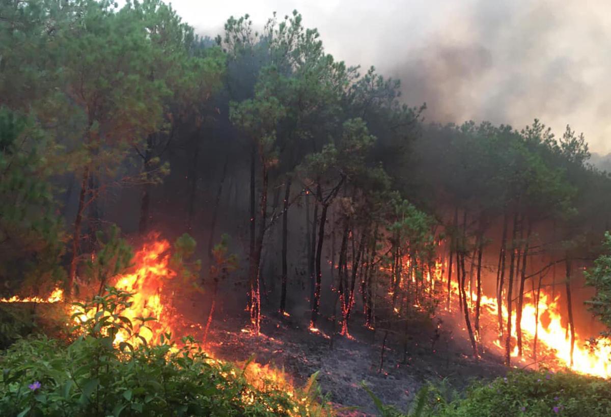 Cận cảnh nơi xảy ra cháy. Ảnh: CTV.