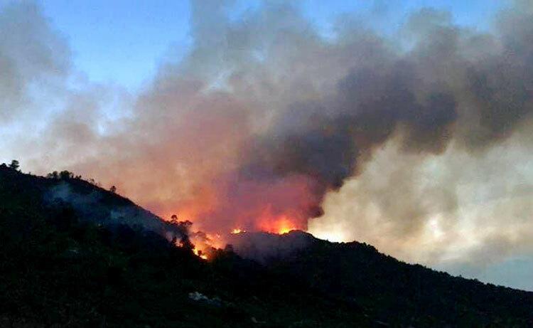 Hiện trường vụ cháy rừng ở Hà Tĩnh chiều 29/6. Ảnh: Gia Hân