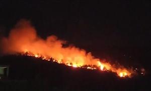 Rừng thông cháy ngùn ngụt giữa đêm