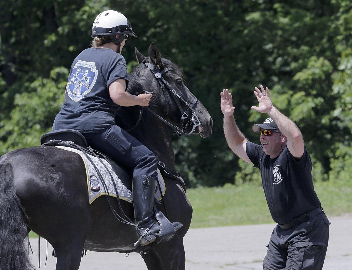 Sĩ quan Shannon David động viên ngựa của cô, Joy, giữ bình tĩnh khi đối mặt với sĩ quan Mike Cameron trong buổi luyện tập hôm  26/6/2019. Ảnh: Dispatch.