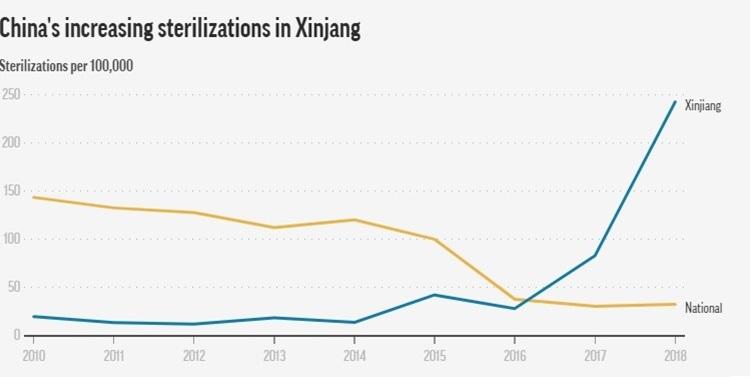 Tỷ lệ triệt sản ở Tân Cương (đường màu xanh) tăng đột ngột từ năm 2016 đến 2018. Đồ họa: AP.