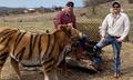 Hai nông dân săn được Vua hổ