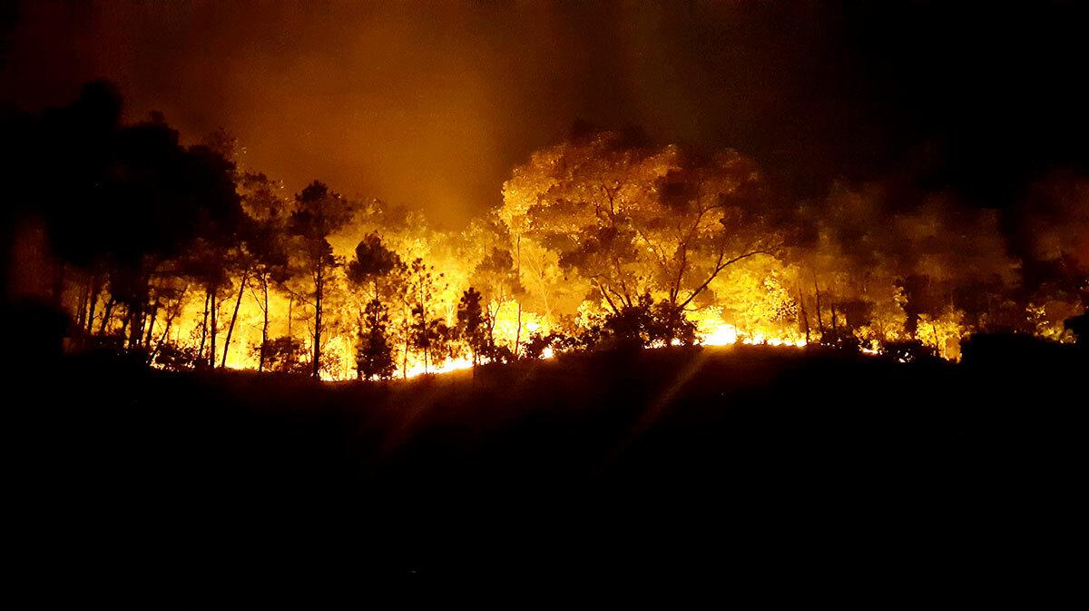 Hiện trường vụ cháy rừng ở huyện Hương Sơn đêm 30/6. Ảnh:Đức Hùng
