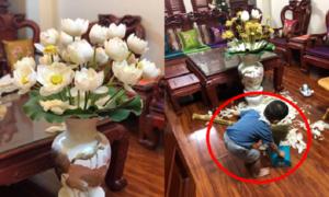Bé trai lom khom thu dọn sau khi vặt hết hoa của mẹ