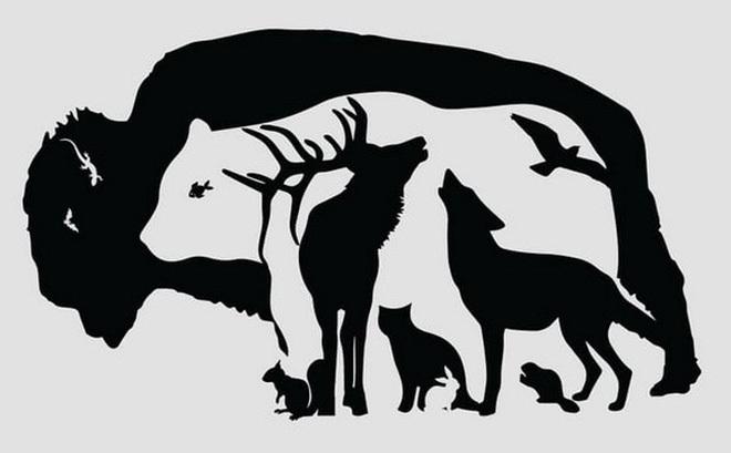 Có bao nhiêu con vật trong bức tranh?