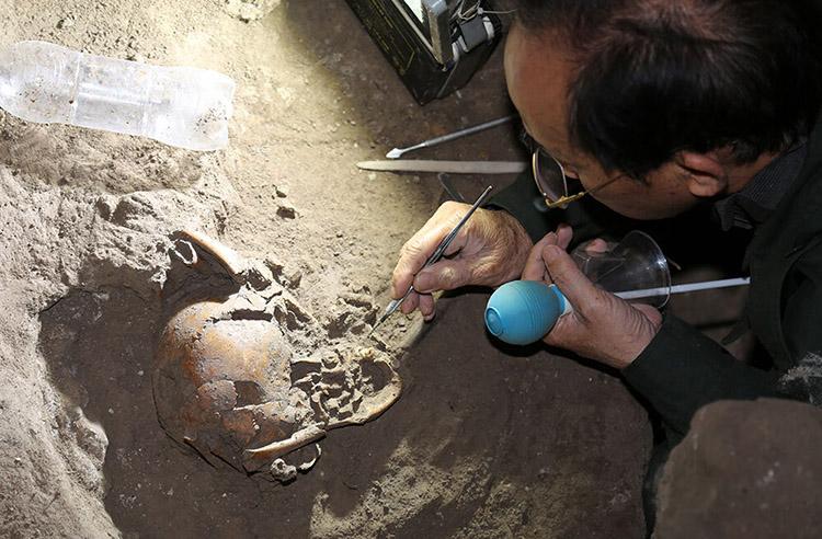 Xương sọ người và hàng chục nghìn mẫu vật được tìm thấy trong hố thăm dò rộng 6 m2, sâu 1,85 m trong hang động núi lửa Krông Nô, tỉnh Đăk Nông. Ảnh: Bảo tàng Thiên nhiên Việt Nam.