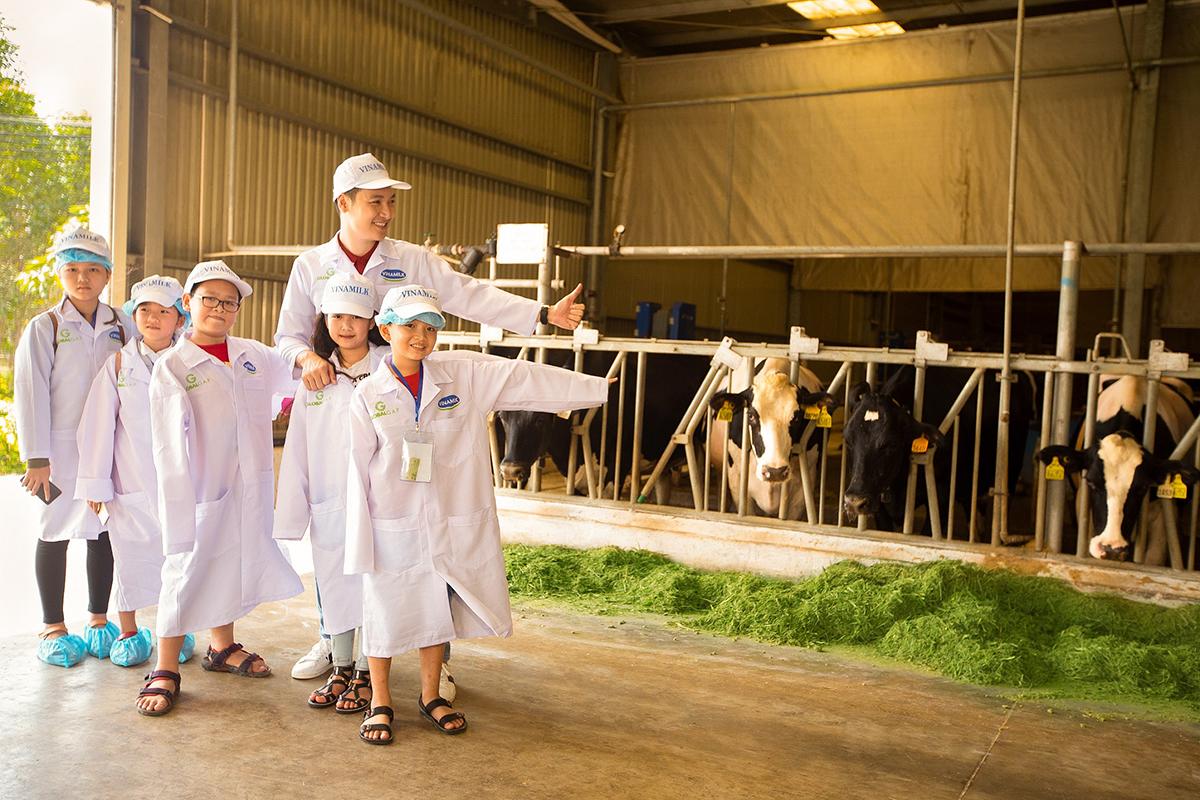 Các em học sinh tham quan trang trại bò sữa, nhà máy của Vinamilk để tìm hiểu về quy trình làm ra những hộp Sữa học đường.