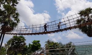 Cầu treo dài 40 m bắc trên cây thốt nốt