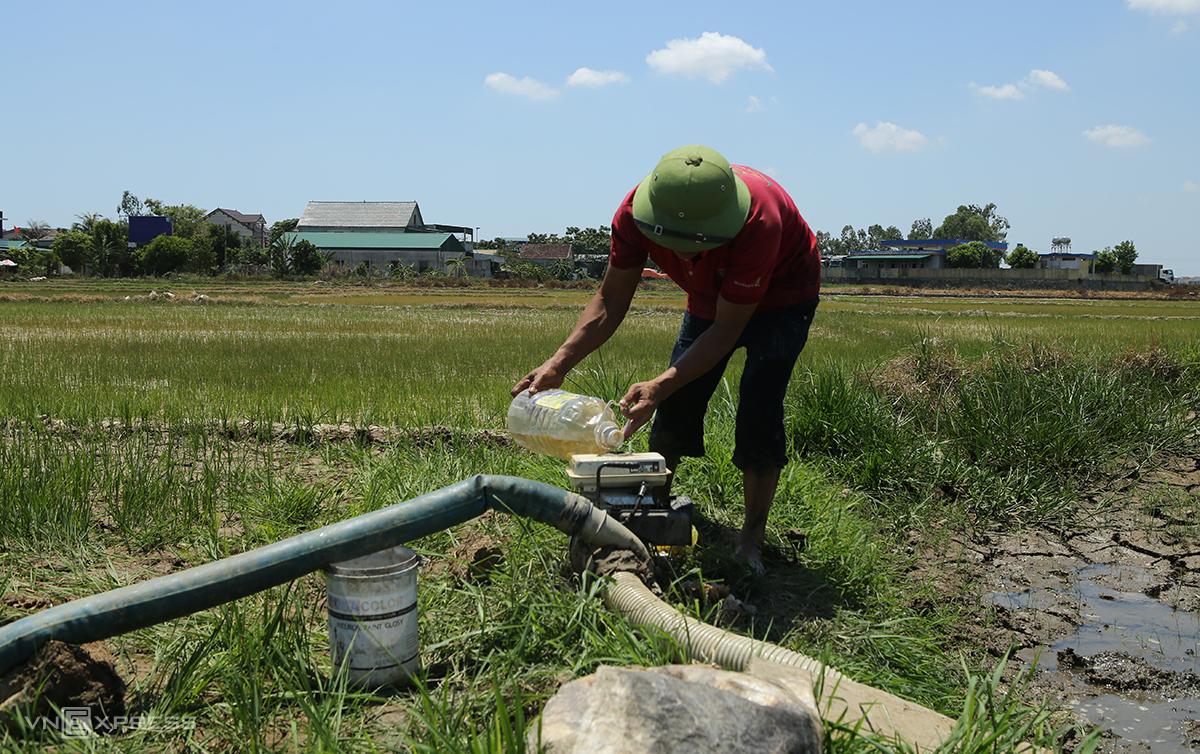 Anh Trung (xã Nghi Hoa) tập trung dùng máy bơm mini đưa nước cứu 3 sào lúa. Ảnh: Nguyễn Hải.