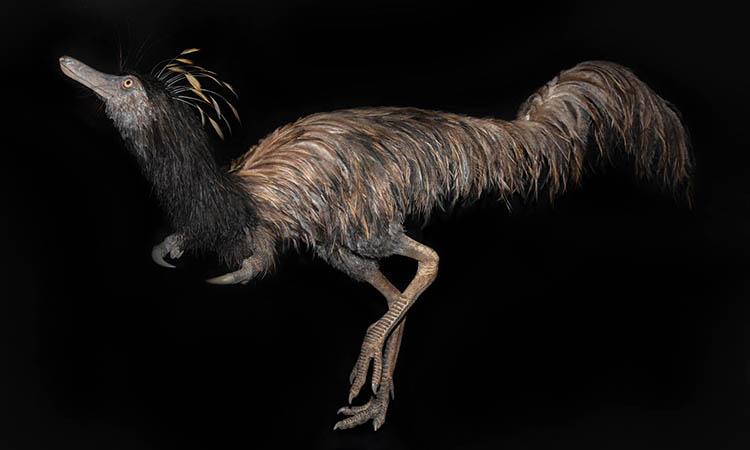 Mô phỏng hình dạng khủng long Trirarchuncus prairiensis. Ảnh: Bảo tàng Khủng long Badlands.