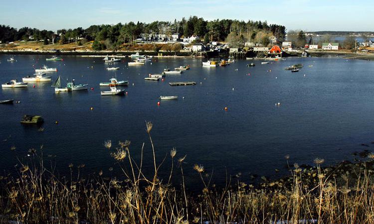 Đảo Bailey ở thị trấn Harpswell, bang Maine. Ảnh: Maine Public.