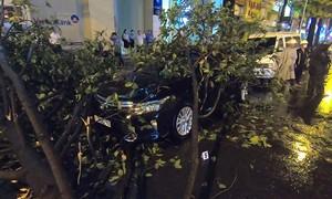 Cây đổ đè ôtô trong mưa lớn ở Sài Gòn