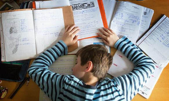 Tự hào con 16 tuổi không biết làm việc nhà nhưng học giỏi - VnExpress