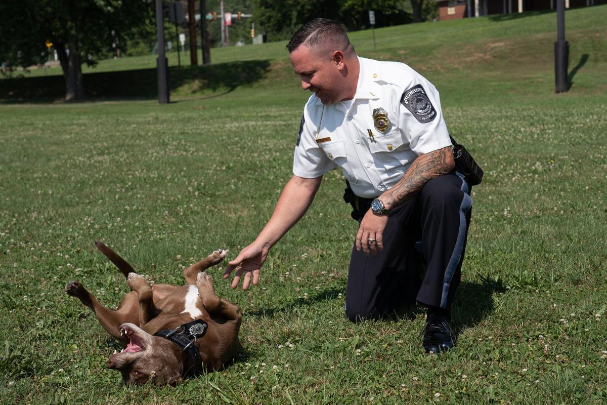 Halo tạm nghỉ nhiệm vụ cảnh sát để được trung úy Mickey Curran xoa bụng. Ảnh: Philadelphia Inquirer.