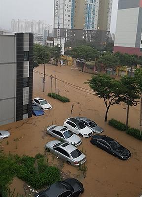 Khung cảnh trước phòng thí nghiệm của chị Vân ở  Đại học Quốc gia Chonnam, Gwangju, sau mưa lớn. Ảnh: Nhân vật cung cấp