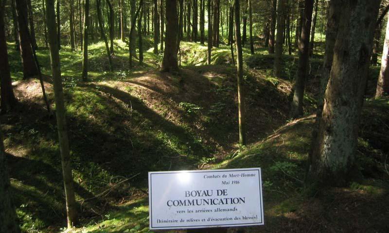 Khu vực rừng cây sâu bên trong Vùng Đỏ ở xã Verdun, vùng Grand Est, Pháp. Ảnh: War History Online.