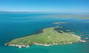 Hệ sinh thái tại hồ nước mặn lớn nhất Trung Quốc
