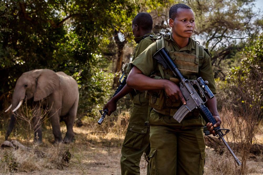 Từ chỗ là nạn nhân trong cuộc sống, các nữ kiểm lâm đã trở thành người bảo vệ của động vật hoang dã. Ảnh: Brent Stirton.
