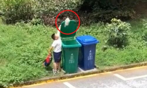 Pha vứt rác cồng kềnh của cậu bé - 2