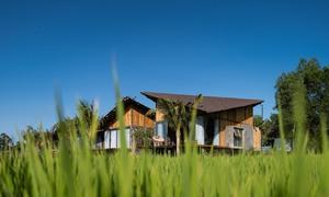 Nhà dưỡng già 30 tỷ đồng giữa đồng lúa