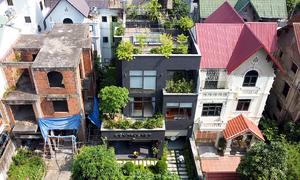 Biến biệt thự cũ thành ngôi nhà xanh mát
