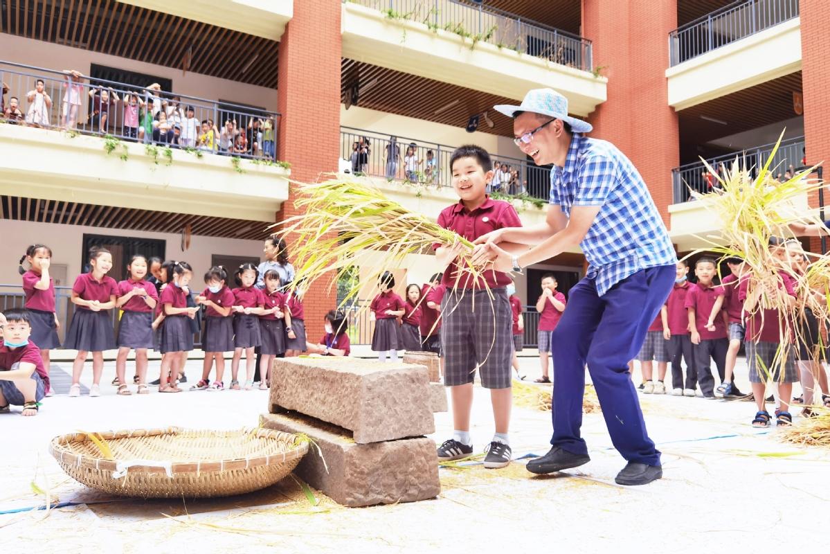 Học sinh trường Tiểu học Qinghe Tongxin thích thú khi được học đập lúa, ngày 2/9. Ảnh: China Daily