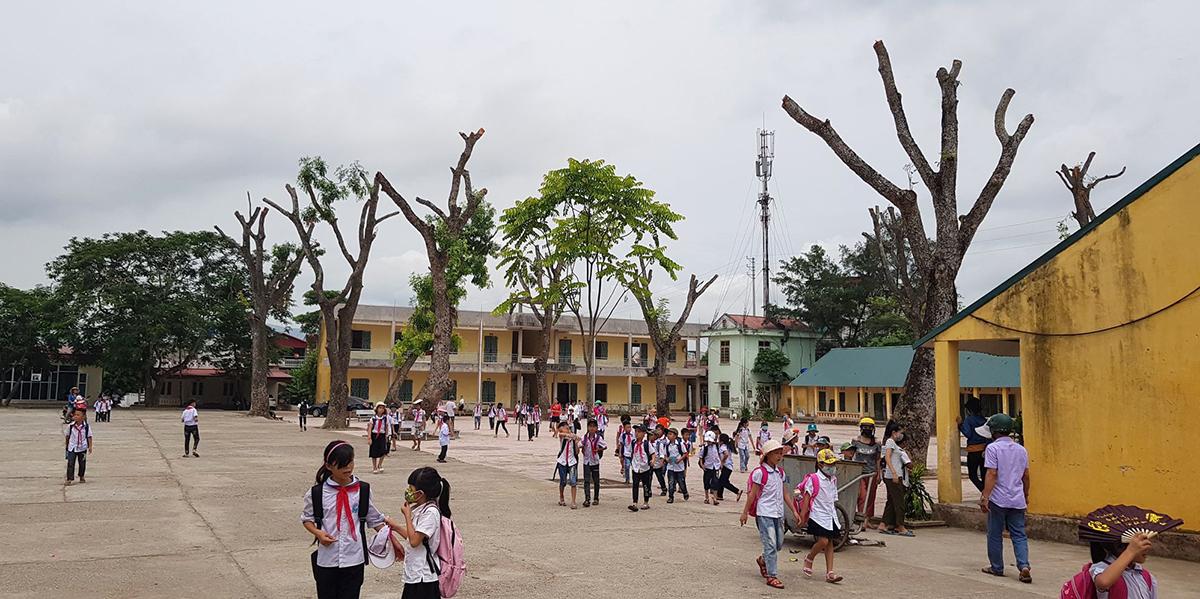 Học sinh Tiểu học ở xã Hải Bình đến trường dịp đầu năm đã không còn bóng mát. Ảnh: Lam Sơn.