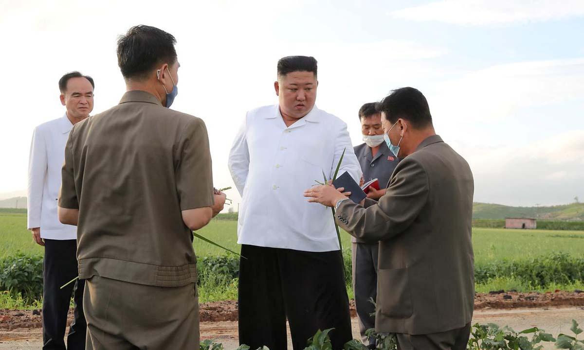 Lãnh đạo Triều Tiên Kim Jong-un (giữa) thị sát khu vực chịu thiệt hại do bão ở tỉnh Nam Hwanghae trong bức ảnh công bố hôm 27/8. Ảnh: KCNA.