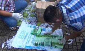 Giấu hàng chục kg ma túy trong thùng trái cây