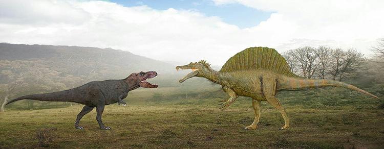 Spinosaurus (phải) có kích thước lớn hơn cả khủng long bạo chúa (trái). Ảnh: Sameer Prehistorica.
