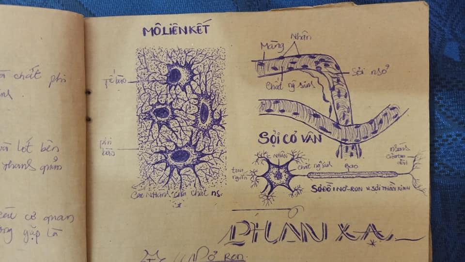 Vẽ toàn bộ bằng bút bi là điều không hề đơn giản vì có quá nhiều tiểu tiết...