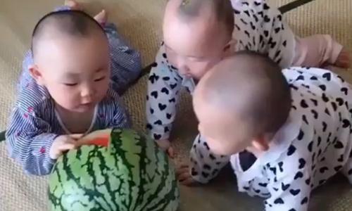 Ba anh em ngoan ngoãn khi bố mẹ về - 2