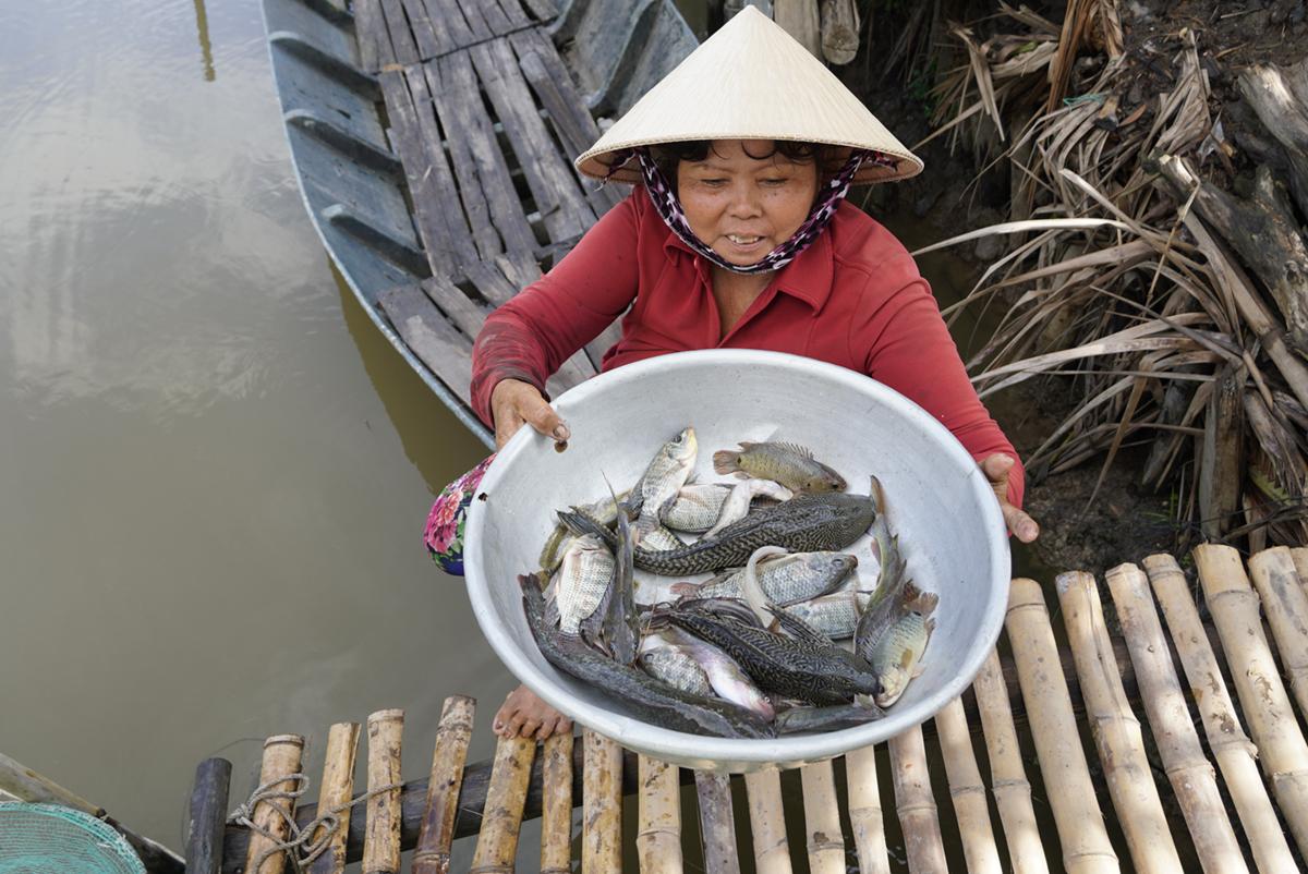 Tốn hơn 13 triệu đồng chi phí đặt vó, vừa thức cả đêm canh, hai vợ chồng nông dân này chỉ bắt được gần 2 ký cá. Ảnh: Hoàng Nam