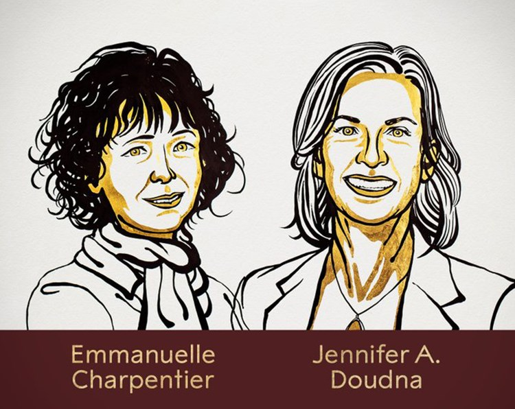 Hai nhà khoa học nữ được vinh danh cho giải Nobel Hóa học 2020. Ảnh: Nobel Prize.