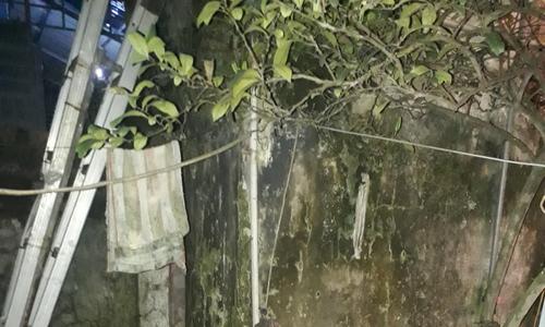 Ước mong có nhà vệ sinh theo tiêu chuẩn của Bộ Y tế